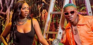 Tiwa Savage calls off DSTV performance over the ongoing attacks in South Africa