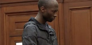 SA court sentences Luyanda Botha to life