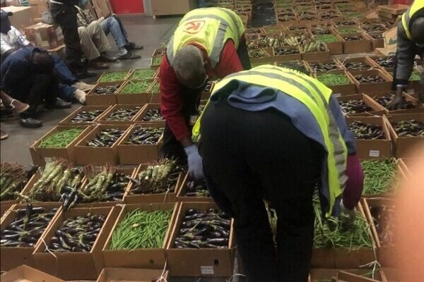 Six arrested as police find concealed Miraa stashed in cartons at JKIA